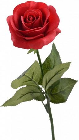 有機大馬士革玫瑰純露