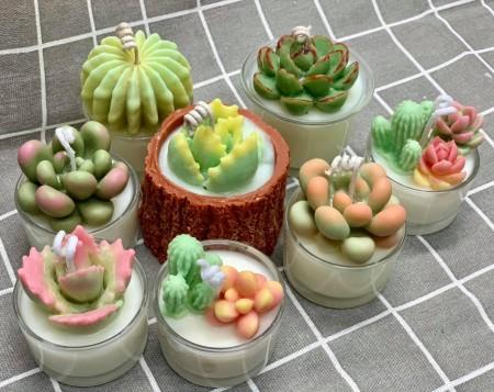 多肉植物蠟燭